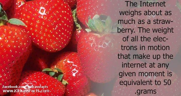 01Strawberry