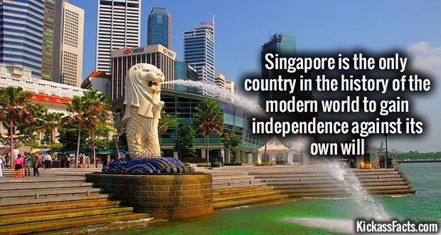 1154 Singapore