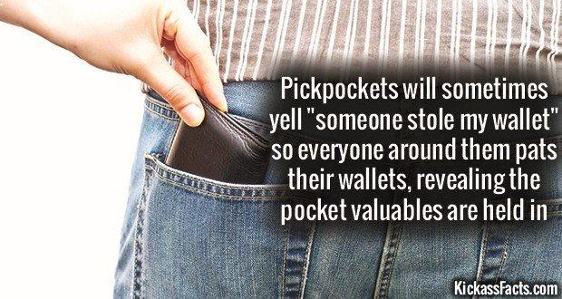 1173 Picpockets