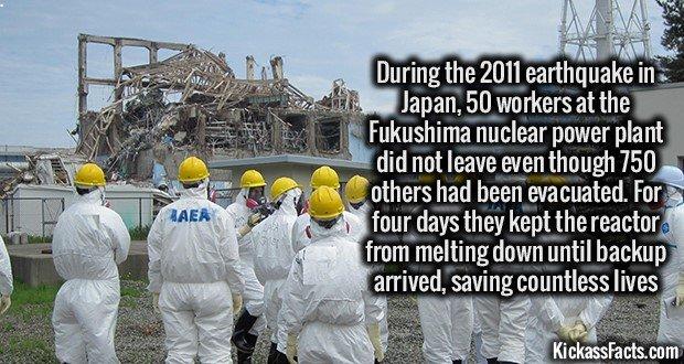 1184 Fukushima 50
