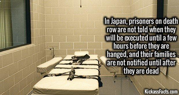 1202 Japanese on Death Row