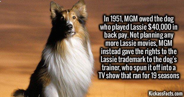 1209 Lassie