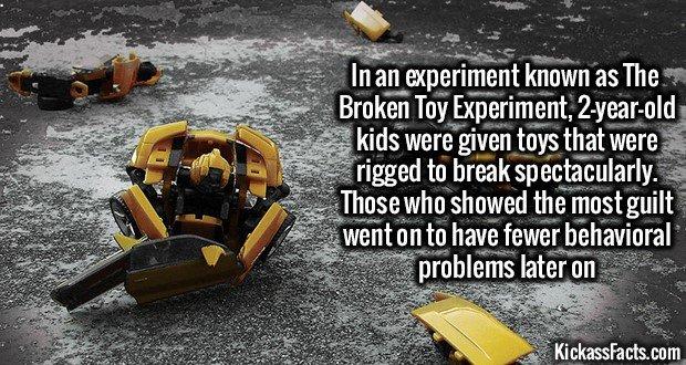 1282 Broken Toy Experiment