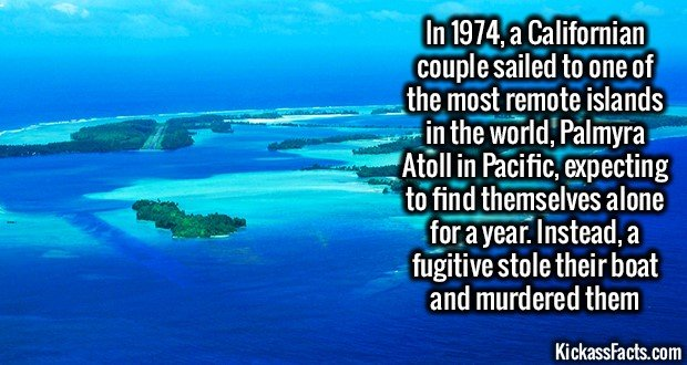 1297 Palmyra Atoll Murder