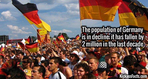 1318 German Population