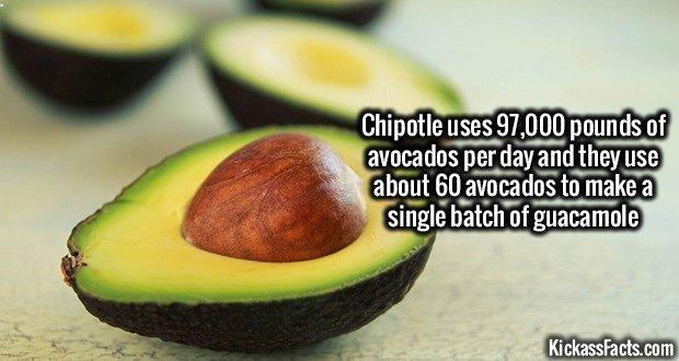 1330 Avocado
