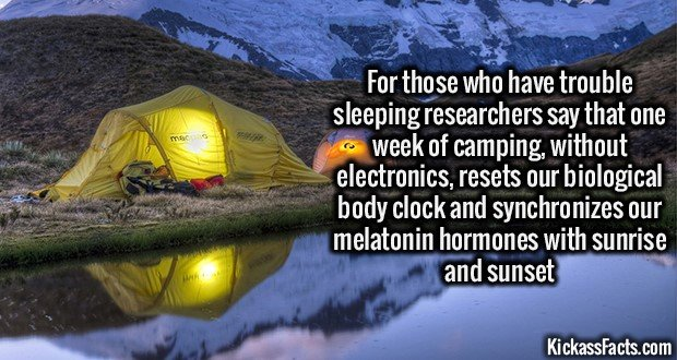 1396 Trouble Sleeping - Camping