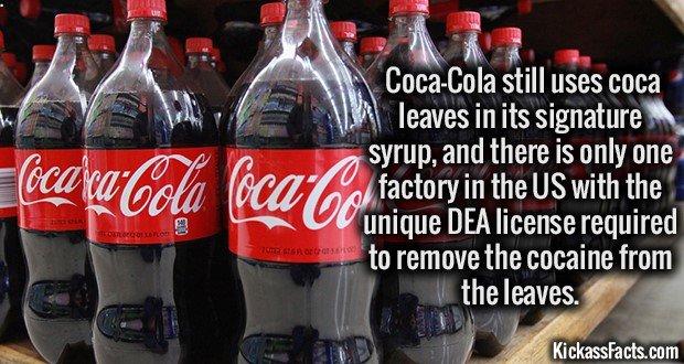 1449 Coca leaves in Coca Cola