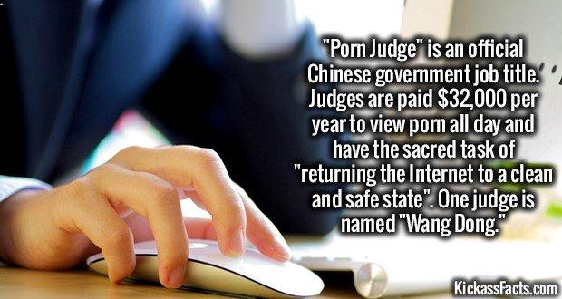 1528 Censor Judge