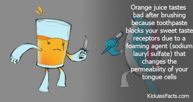 208toothpaste-orange-juice