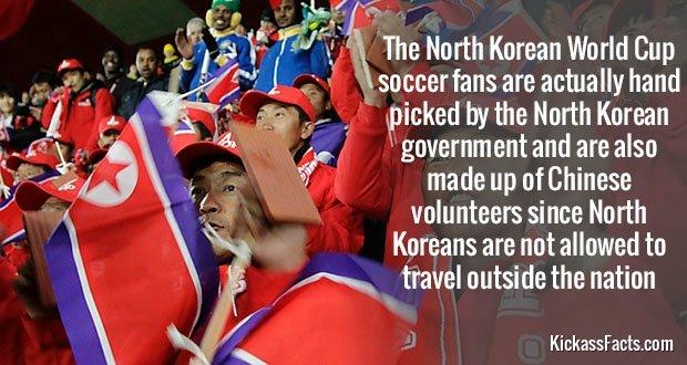 535NK Soccer Fans