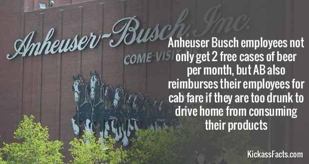 557Anheuser Busch