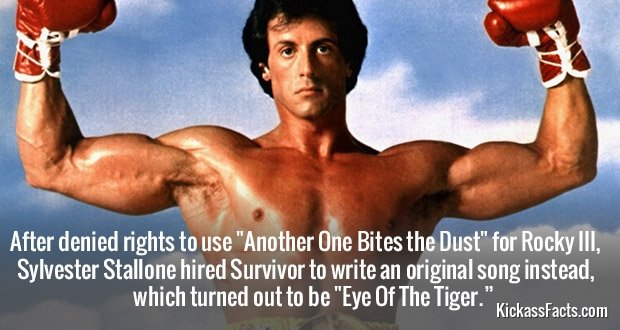 582Eye of the Tiger