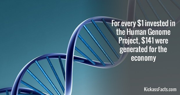 598Human Genome Project