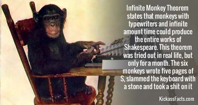 623Infinite Monkey Theorem