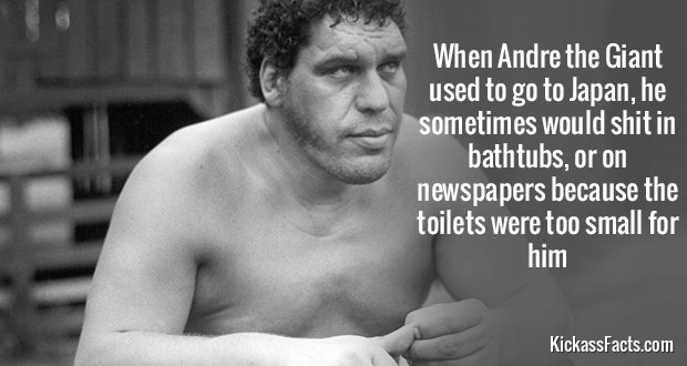 665Andre the Giant