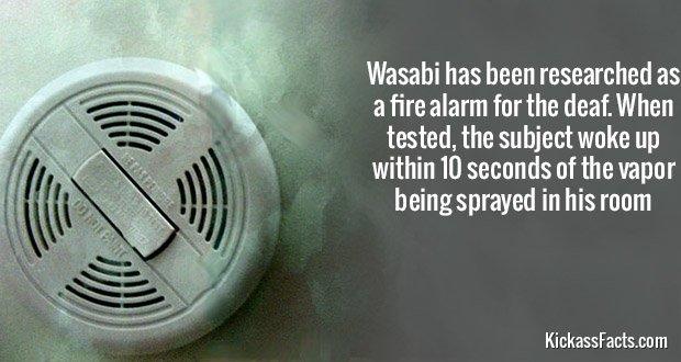 716Wasabi Fire Alarm