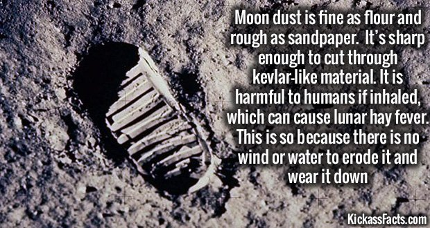 867Moon Dust
