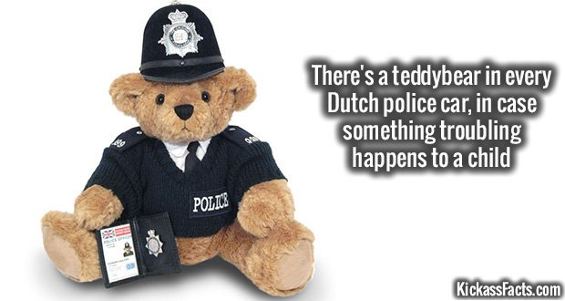 872Dutch Police Teddybear
