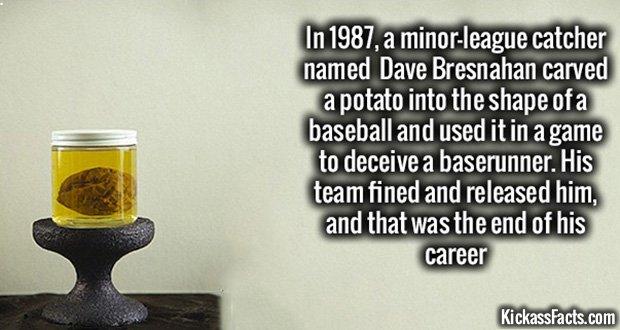901 Potato Baseball