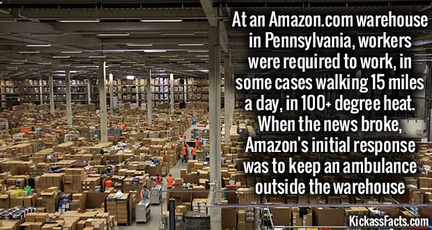 913Amazon Warehouse