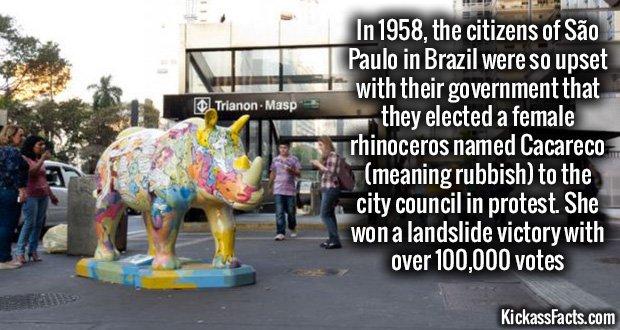 926 São Paulo