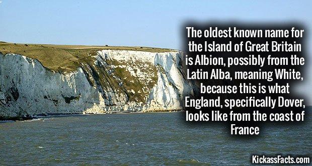 942 Albion