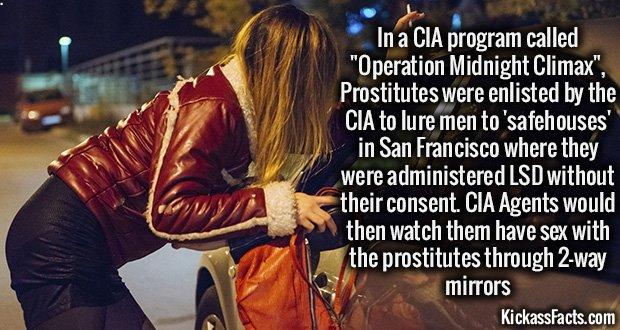 973 Operation Midnight Climax