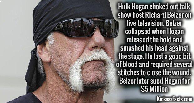 Terry Bollea, Hulk Hogan
