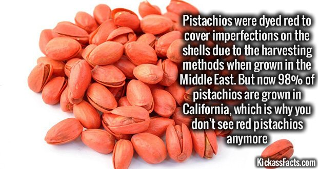 981 Red pistachios