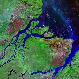 Amazon River-Amazing Facts About Amazon Rainforest