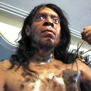 Neanderthal-Amazing Facts About Health