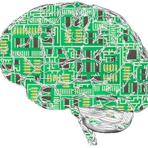 Synthetic Brain-Experiments Scientists are Working On