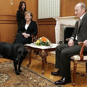 Vladimir Putin Dog-Interesting Facts About Russia