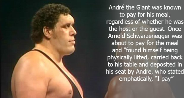 110André the Giant