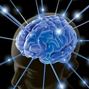 Brain Electrodes-Amazing Facts About Brain
