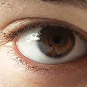 Brown Eyes-Interesting Facts About Eyes