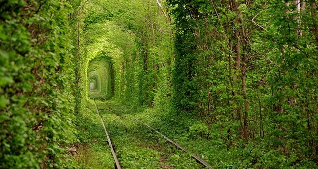 Tunnel of love-Surreal Places on Earth