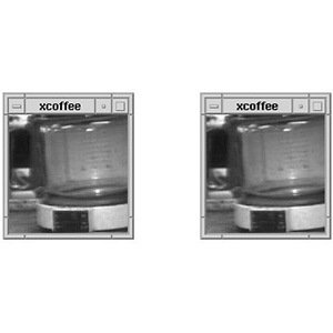 Webcam- Interesting Facts About Coffee