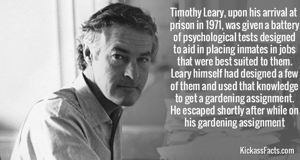 353Timothy Leary