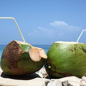 Coconut water-Interesting Facts About Water