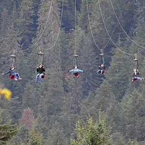 Hoonah, Alaska Zipline-Interesting Facts About Alaska