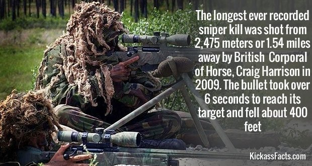 411Snipers