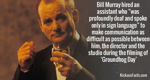 417Bill Murray