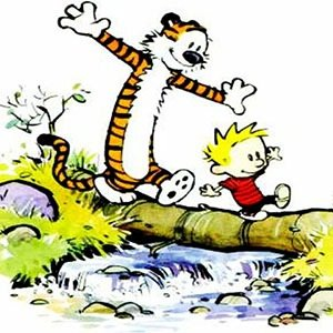 Calvin and Hobbes-Random Facts List