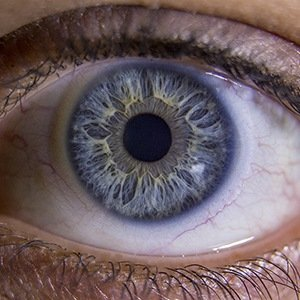 Human Eye-Interesting Facts About Humans