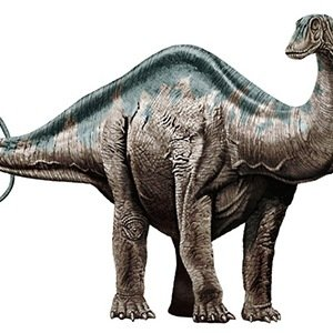 Apatosaurus-Interesting Facts About Dinosaurs