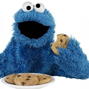 Cookie Monster-Interesting Facts About Cookies