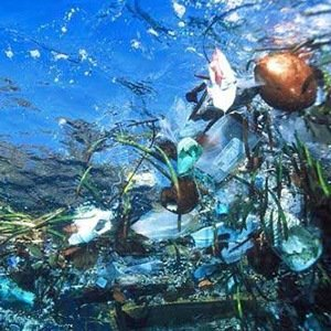 Ocean garbage patches-Interesting Facts About Plastic