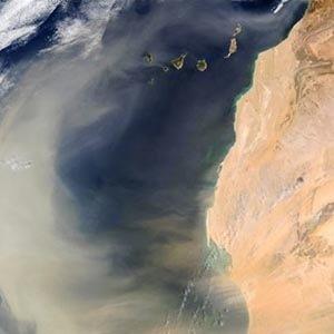 Sand from the Sahara to Amazon-Random Facts List